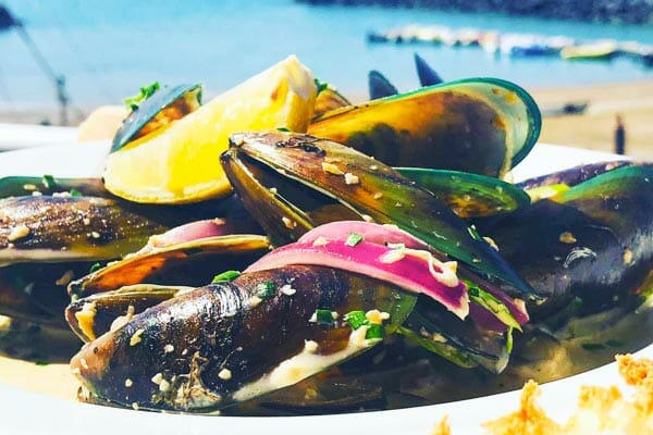 NZ Green Lipped Mussels in Garlic Wine Sauce by the waterrfront