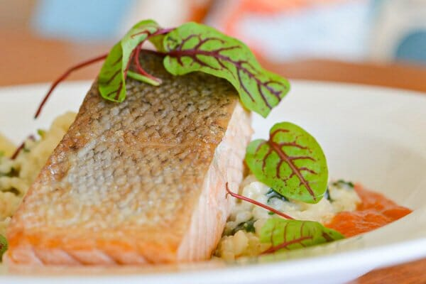 salmon dinner by D'vine Catering & Events, Whitsundays, Queensland, Australia